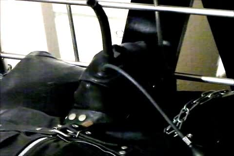 Wearing A Rubber Cat Suit Inside A Leather Body Bag chained To The sofa, Hooded And Gagged, Then Teased For Two Hours Until he sperm.