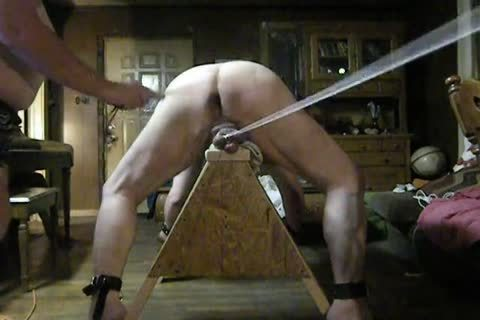 bulky Daddy receive tied Up On His Sawhorse, Then Spanked And Balls Bashed.