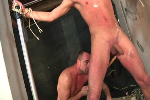 Some bdsm For those twinks To Feel joy