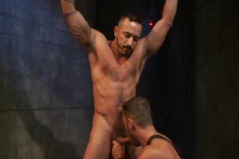 nasty homosexual fastened And anal cumshot