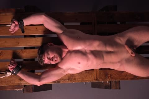 Muscle dude Cums After Being Whipped & Stretched - bdsm