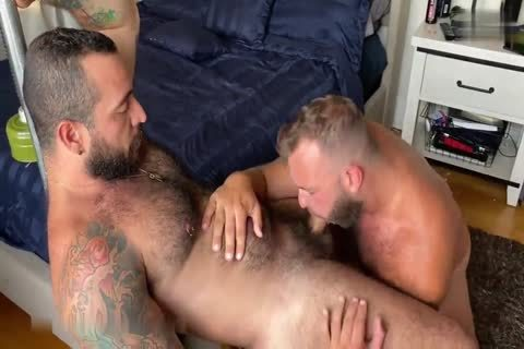 Two pumped up Bears pounding Nonstop